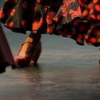 Flamenco Biënnale 2021